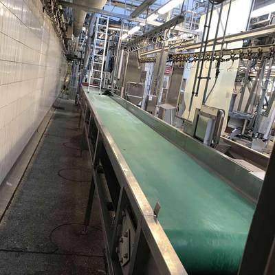 Paunch conveyor belt