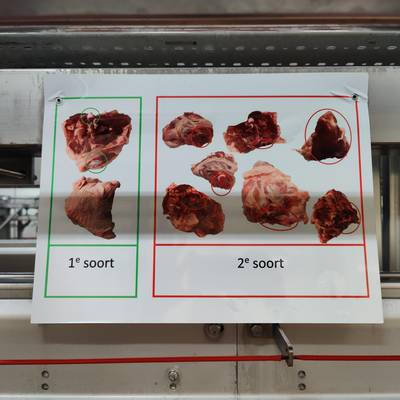 Poultry cut-up line
